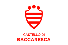 COSE AGENCY - BACCARESCA logo